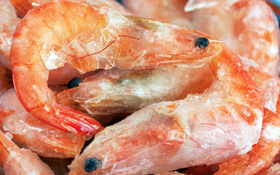 Is Seafood Frozen With Nitrogen Better?